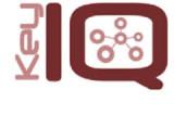 Key IQ logo